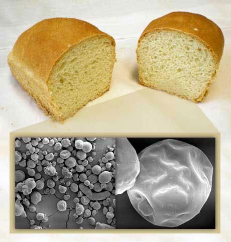 El aceite de lino es una de las fuentes más ricas (60%) de omega-3 y fue incorporado en microcápsulas a un pan desarrollado por INTI-Química. Fotos: INTI.