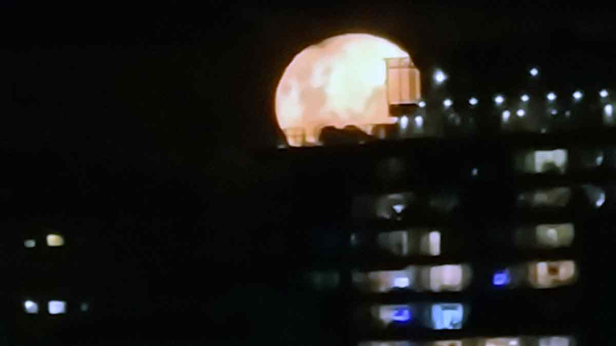 Luna en Olivos