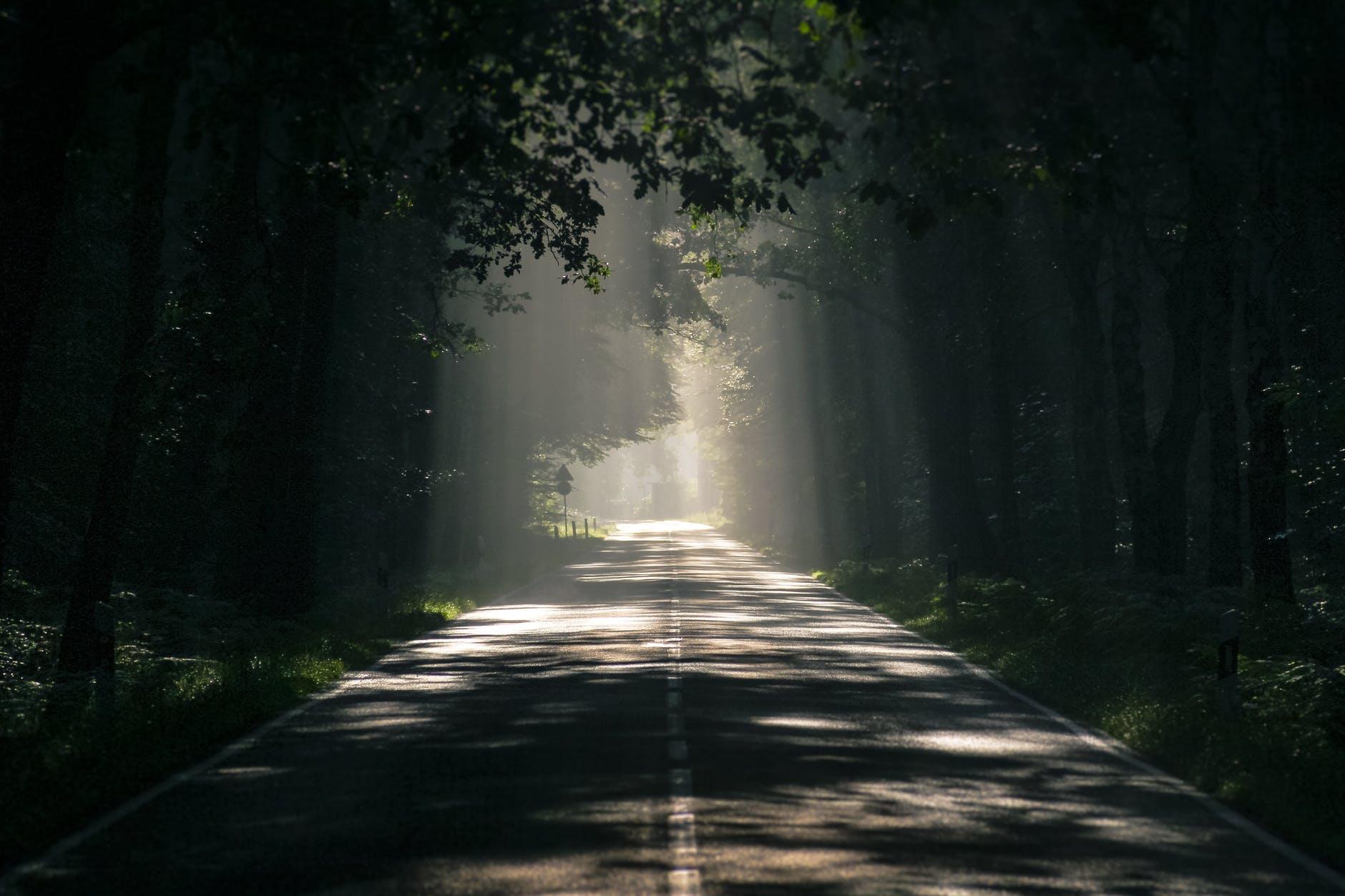 Four Paths Light Pt. 2, de Pat Metheny, por Jason Vieaux