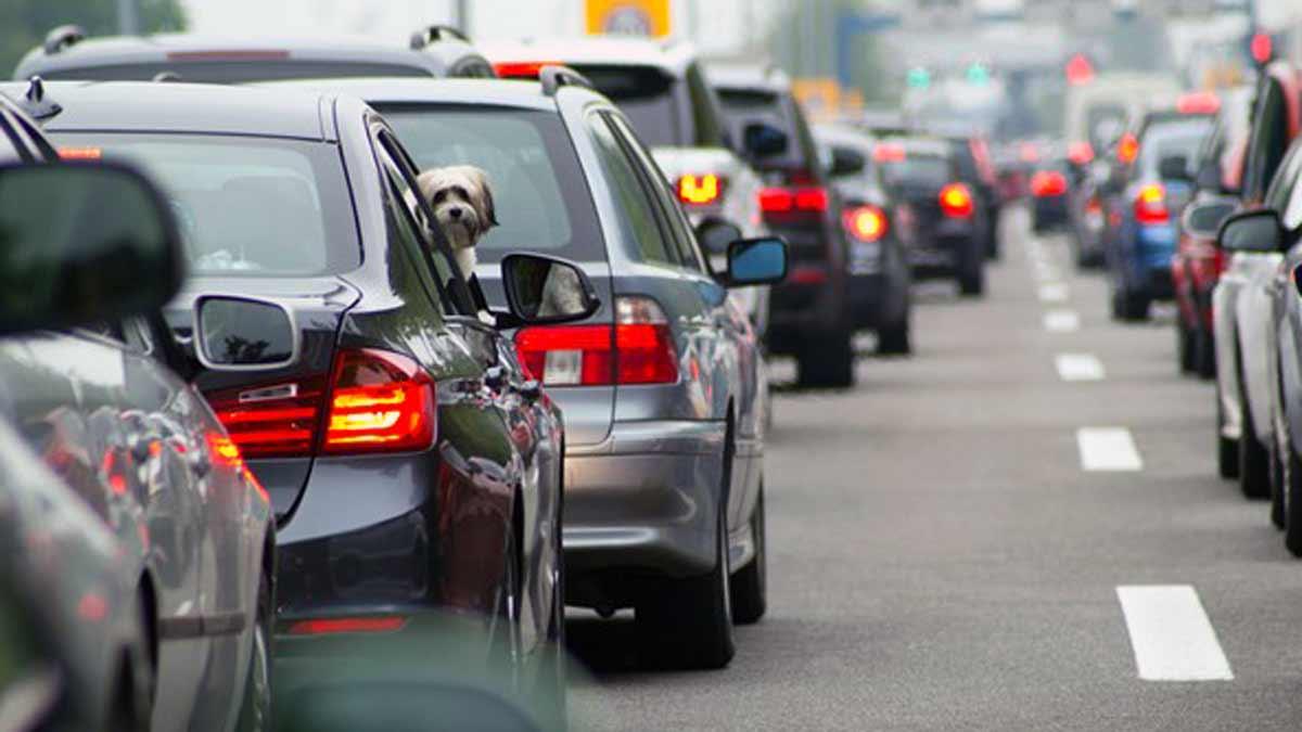 Desde el sector de seguros de autos, advierten modificaciones en los precios de las pólizas